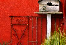 Bird House Ideas / by Joyce Patman