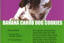 Pet Treat Recipes / A collection of dog and cat treat recipes / by Windsor Veterinary Clinic
