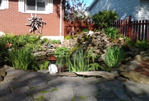 Awesome gardens,backyards and interiors and DIY projects / by Gordon Pechie
