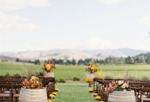 """Ceremony Ideas / by """"The Wedding Lady"""" - Danielle Baker- Officiant & Minister"""