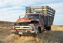 Abandoned Vehicles / by BVS Books