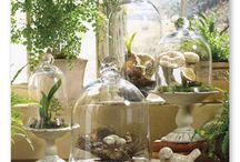 decorate – spring / by Mystie Winckler