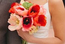 tulip wedding / by Sherry Willome