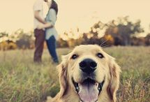 im engaged! / by Megan Christiansen
