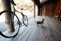 Dog Guests / by Sea Ranch Lodge