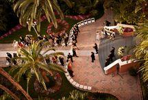 Wedding 2.0 / by Kelly Lawson