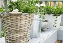 Gardening Galore / Find creative ideas to grow plants on your #apartment patio or balcony and learn how you can bring the outdoors inside!  / by Apartment Guide