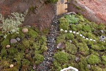 Mini garden / Mini garden / by Carrie Marie Josey Soles