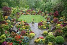 garden / by Amy Altesleben
