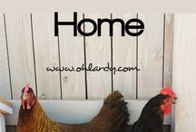 Colleen and Eugene / Chickens! / by Heather Stewart May