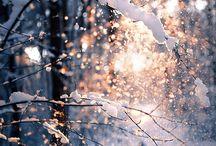 Winter Wonderland / by Jessi James