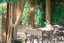 The ultimate backyard life / by Cindy Davis