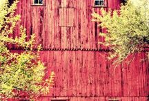 Barns / by Terri Kisselburg