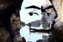 Perspectiva / by Oscar Pedroza Zambrano
