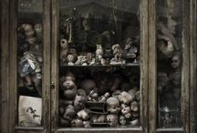 Curio-osities... / by Kimbooly's Spooklings