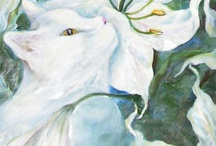 (White) Cat Art / White cats in art through the ages: from Renaissance to Modern Art / by Evelina Tetsman