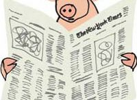 pigs / by Melissa Stitt