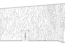 Plans Sections Elevations / by Gianno Feoli