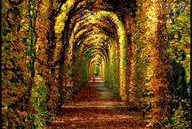 Beautiful sites. / by Elisabeth Crowe