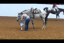 Appaloosa Video / by Appaloosa Horse Club