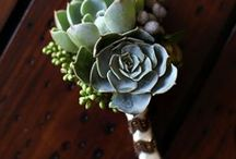 Boutonnieres / Boutonniere inspiration because flowers aren't just for the bride! / by Flower Muse