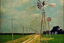 Wild About Windmills / by Write | Market | Design