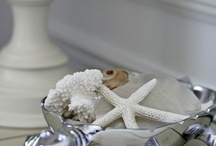Sea Breeze Decor / I'm fascinated with ocean style decorations, it inspires me with calm. / by Skylar Trinity