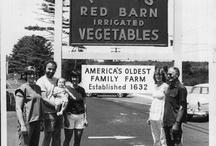 Farming festivities / by Leslie Leon-Cremeens