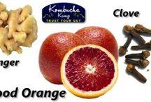 Kombucha/Probiotic/Fermented / by Rebecca Jones