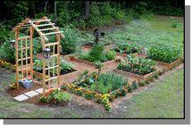 garden and yard / by Colleen Sondgerath