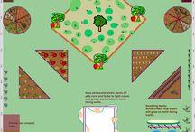 Love Shady Gardening. / by GrowVeg.com
