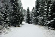 Winter / by Deanne