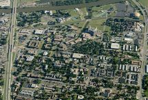 Baylor University #Sic'Em / by Jacey Weatherbee