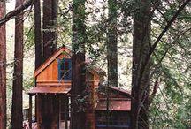 Tree Houses / by LeAnn Mock