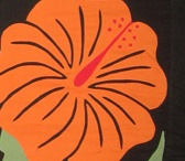 Hawaiian Applique / by Sandy Englund