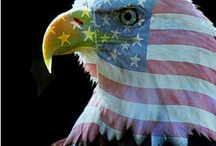 Proud 2B an American! / by Kathy Moncrief