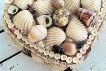 Shell ideas / by Annie N Wayne Evans