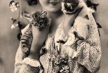 everybody wants to be a cat / by Rachel Fesperman