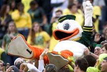 Oregon Ducks / by Abigail Nicole