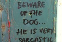 funny's / by Carri Knighton