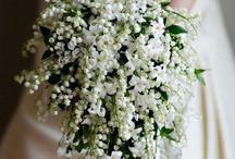 Wedding Flowers / by Marvella Franco
