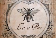 Bees and Butterflies / by Jennifer Baggerly- Milligan