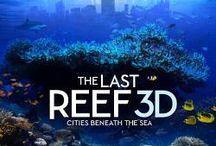 3D Documentary / by Stereoscopic Man