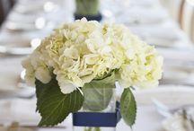 Wedding / by Melissa Bailey