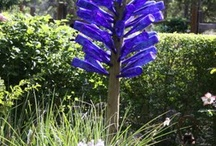 Bottle Trees / by Robin Thomas