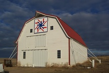 Barn quilts / by Sharon Minning
