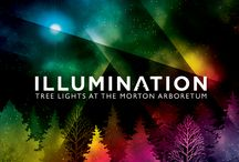 Illumination: Tree Lights at The Morton Arboretum / Join us this holiday season as The Morton Arboretum is transformed into an interactive wonderland of color and light during its first-ever winter lights event, Illumination: Tree Lights at The Morton Arboretum. From November 22 to January 4, Illumination offers a holiday experience far beyond traditional twinkle lights, engaging your senses with dazzling projections, trees that respond to your touch and voice, and vivid, electric colors throughout. Details at mortonarb.org/illumination  / by Morton Arboretum