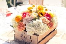 Wedding / by Leanna Achen