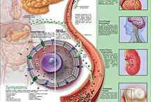 Diabetes Resources / As a type 1 diabetic, I want to put together a little resource board for all of us to enjoy :-D / by The Organic Diabetic