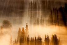 Nature / by Muhammad Azaz Qadir